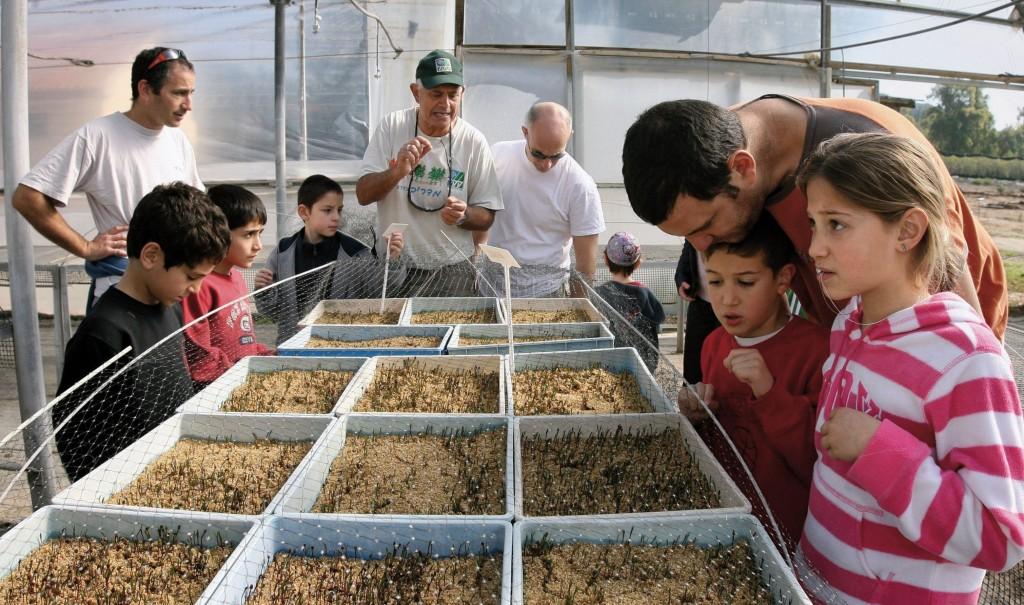 Lernen über die Natur mit dem KKL in Israel