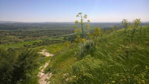JNF-KKL, Israel National Trail