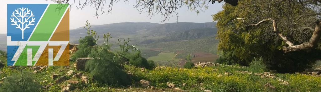 KKL Wald in Israel
