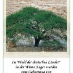 Spenden-Urkunde des KKL-Deutschland urkunde akazie