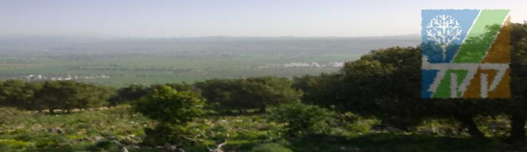 Blick in das Hula Tal/ Chulaebene, KKL