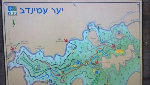 JNF-KKL steht für Wasser, Wald und soziales Engagement