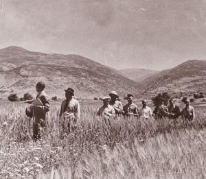 Frühzeit des KKL: Einwanderer begehen die Landschaft Israels