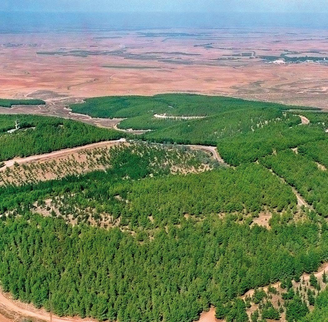 JNF-KKL, Lahav-Wald