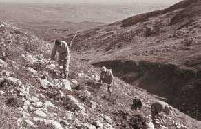 Erworben vom JNF-KKL: karge Landschaft wird bearbeitet