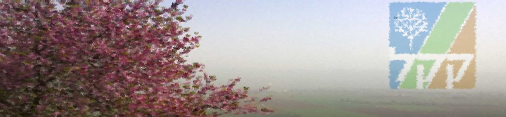 KKL, Mandelblüte im Hula Valley, Foto Christian Seebauer
